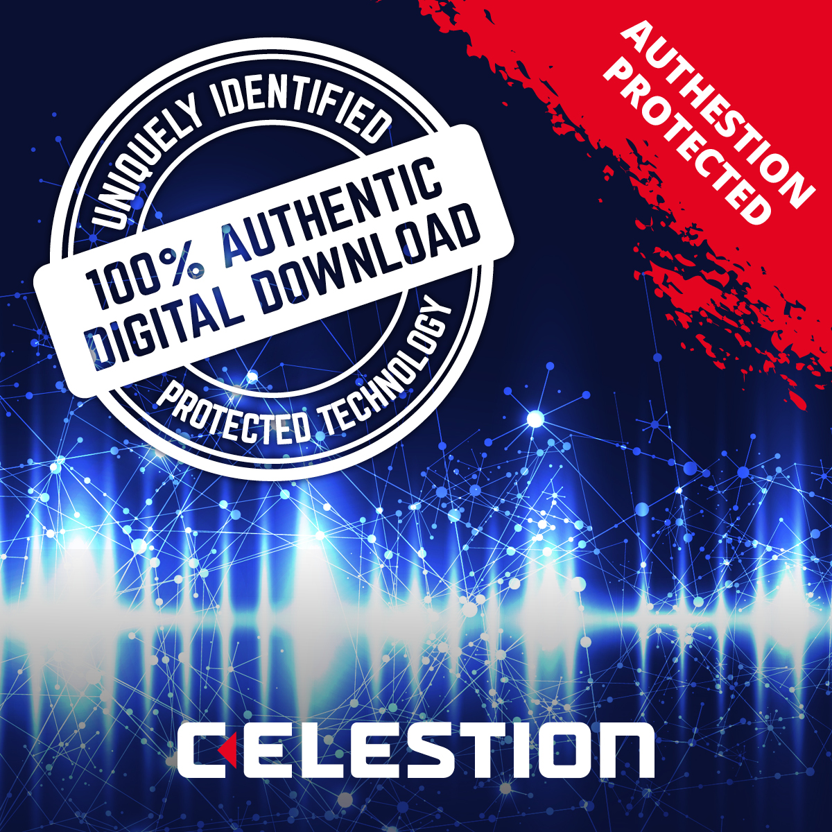 Authestion marking, protected digital downloads